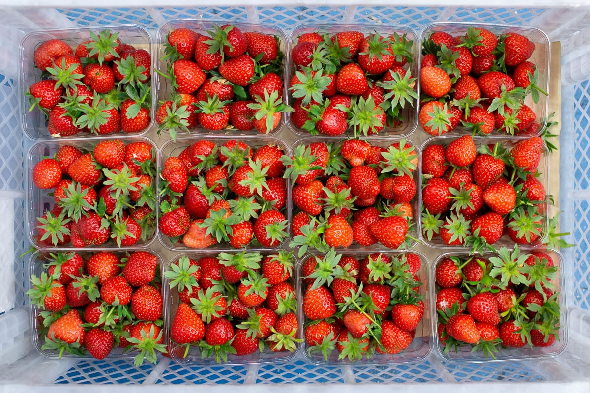 Fruit And Veg Market Report June 2019 Strawberries
