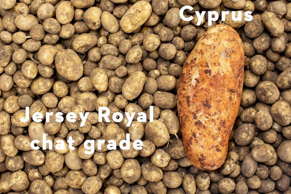 Fruit And Veg Market Report March 2019 Potato Varieties