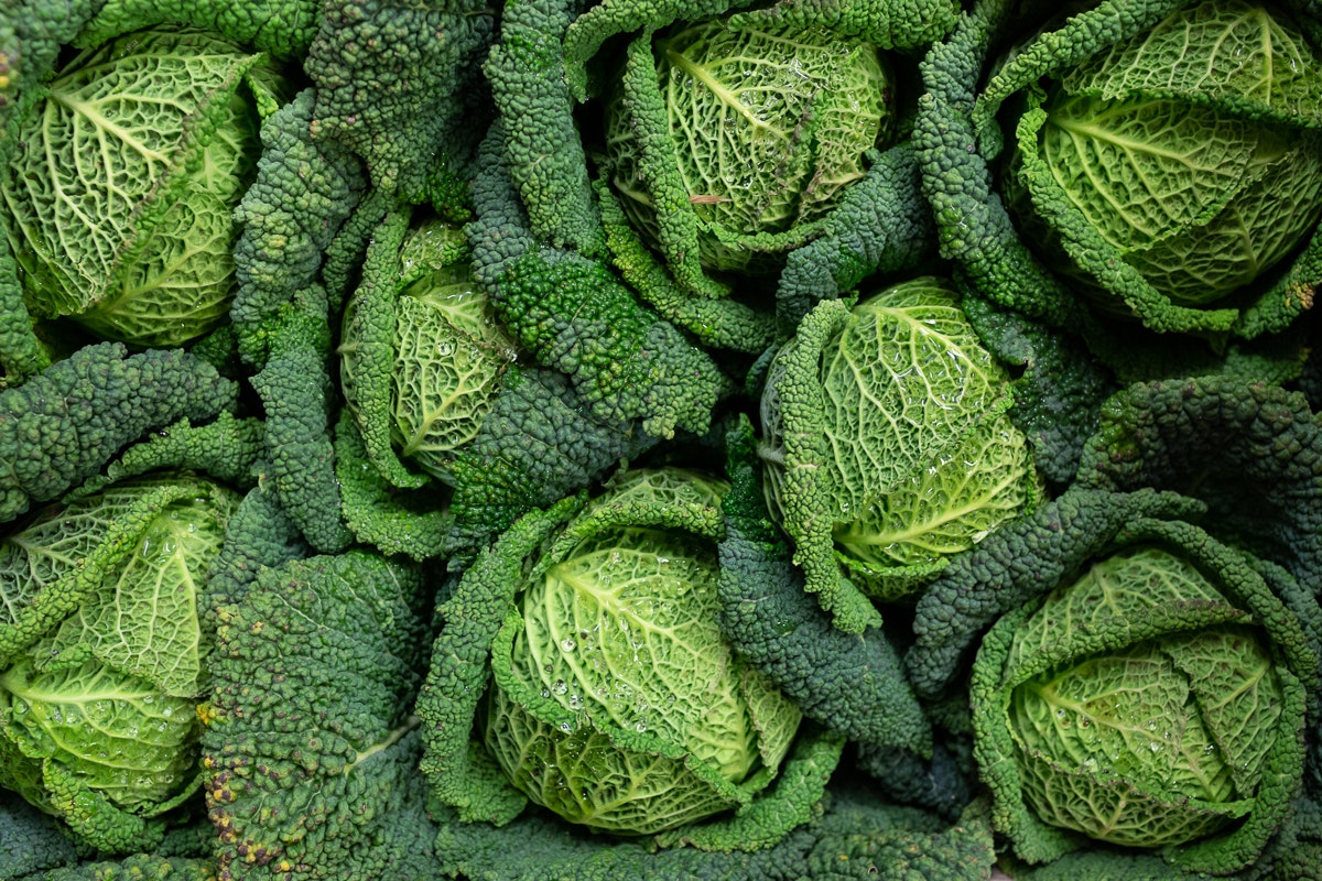 Fruit And Veg Market Report March 2019 Savouy Cabbage