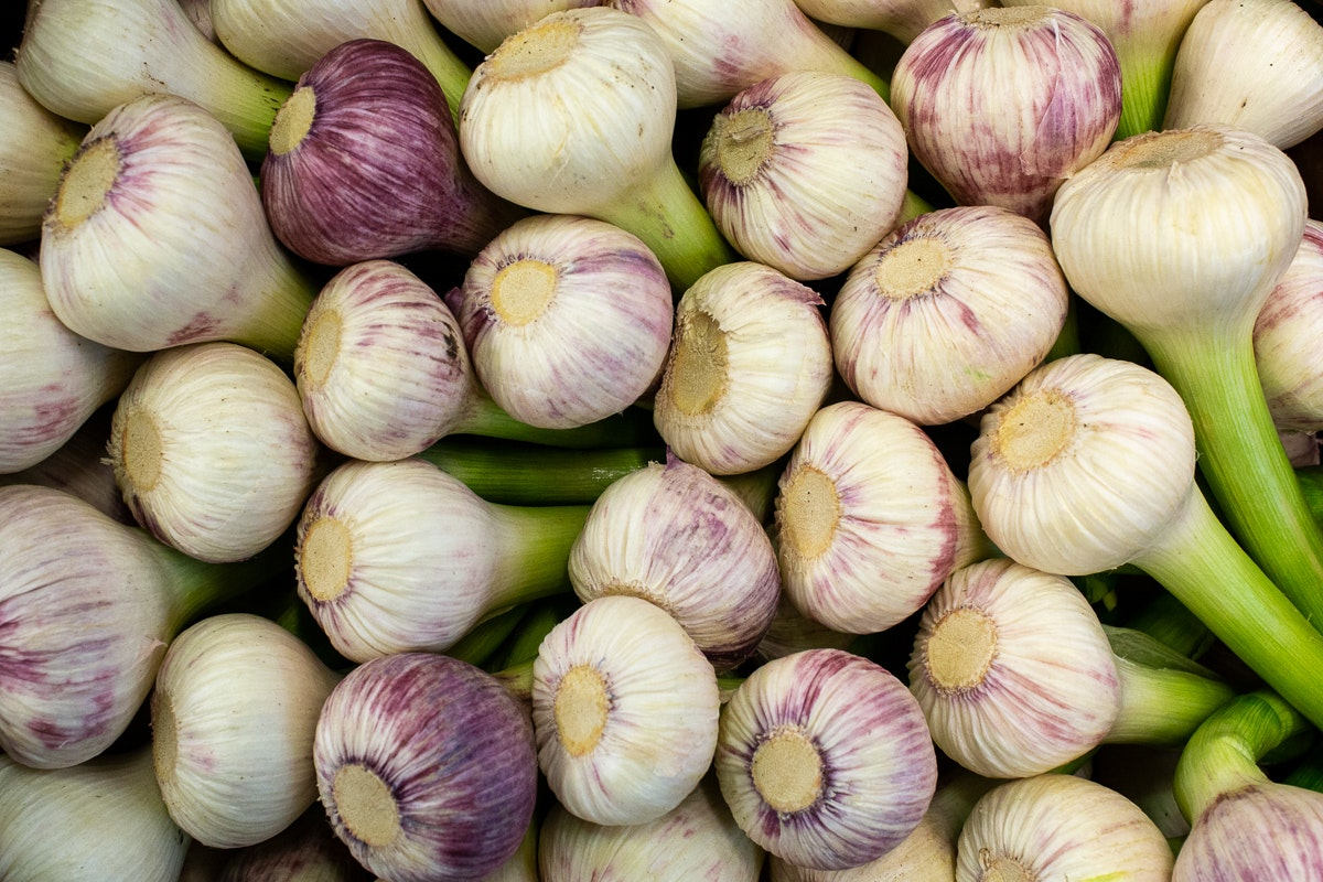 Fruit And Veg Market Report March 2019 Wet Garlic