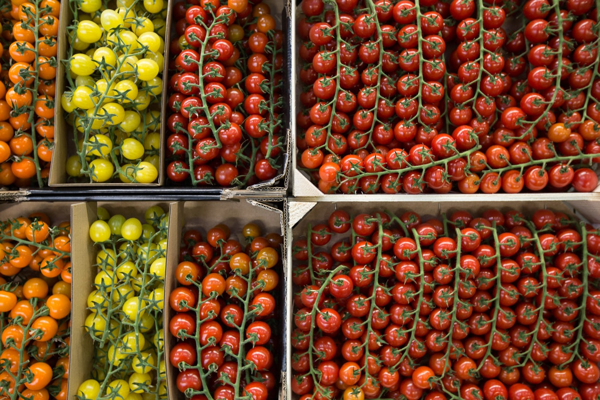 Fruit And Veg Market Report May 2018 Tomatoes