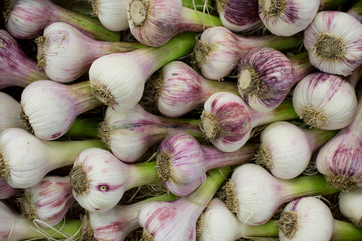 Fruit And Veg Market Report May 2018 Violet Garlic