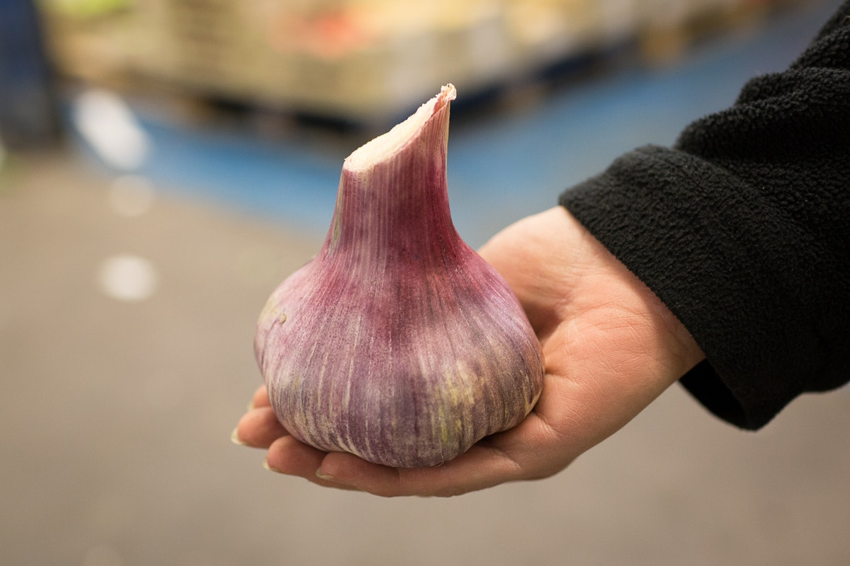 Fruit And Veg Market Report May 2018 Wet Garlic