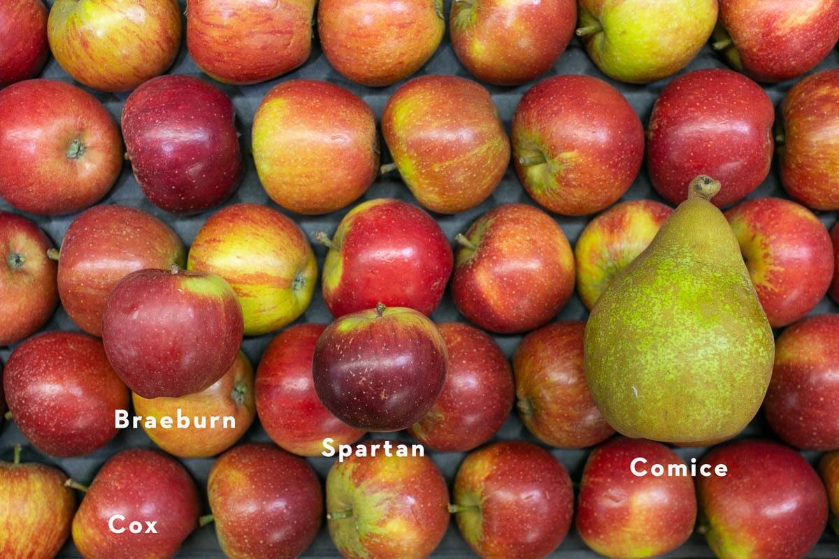 Fruit And Veg Market Report November 2019 Apples