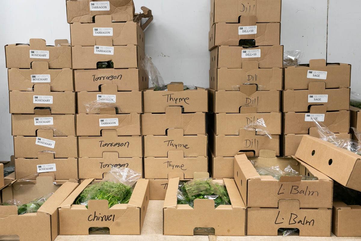 Fruit And Veg Market Report November 2019 Herbs