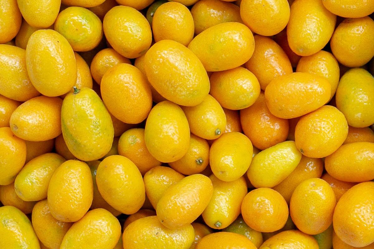 Fruit And Veg Market Report November 2019 Kumquats