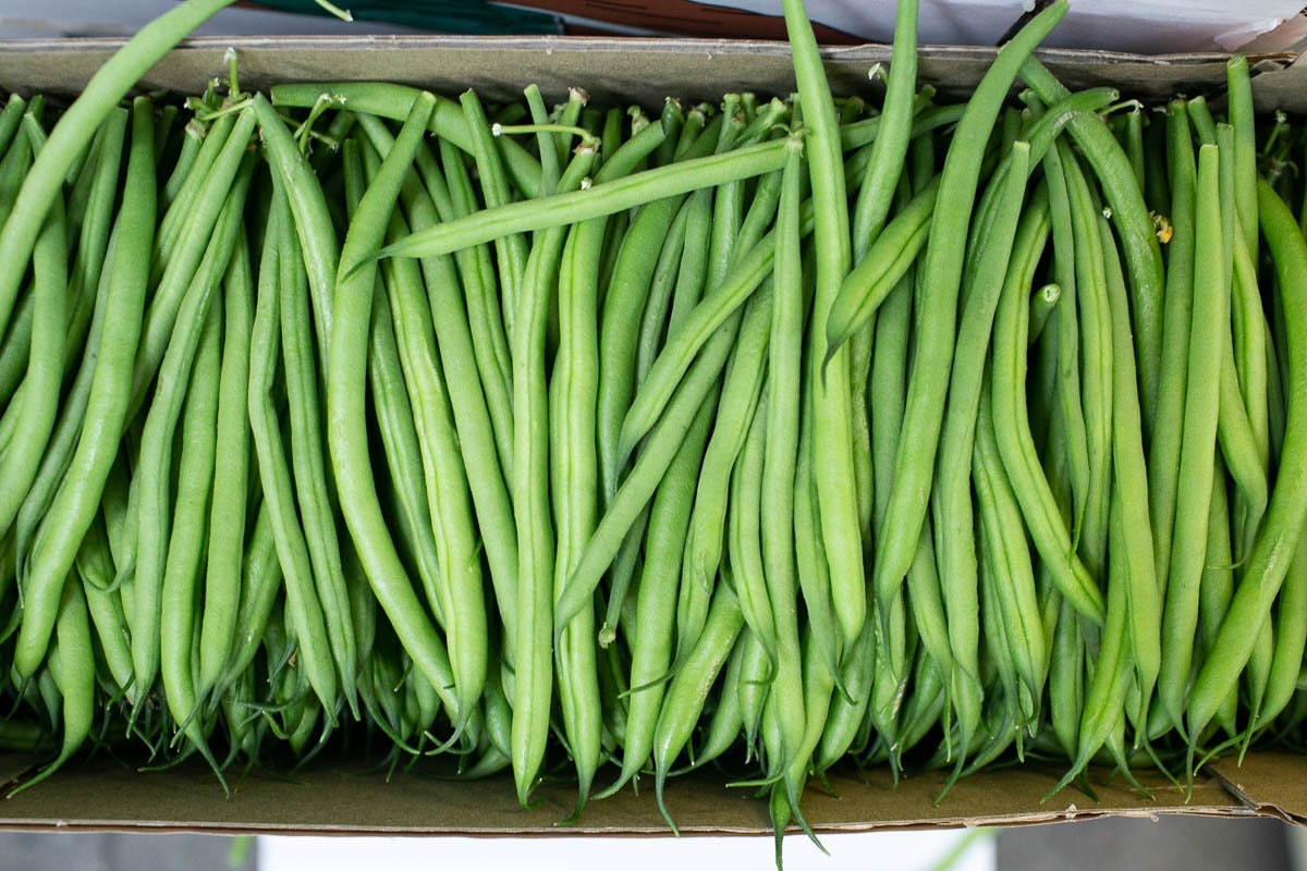 Fruit And Veg Market Report October 2019 Fine Beans
