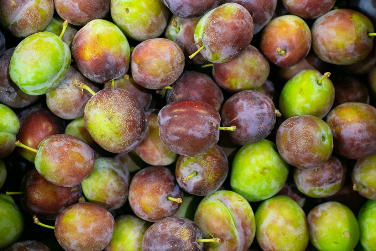 Fruit And Veg Market Report September 2019 Plums