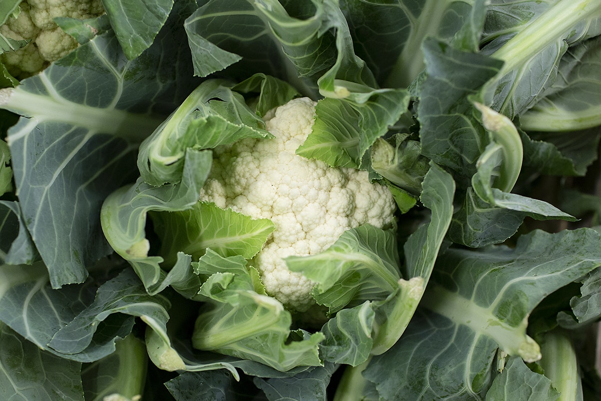 Fruit And Vegetable Market Chefs Guide Root To Flower Cauliflower