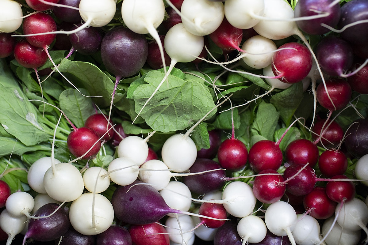 Fruit And Vegetable Market Chefs Guide Root To Flower Radish
