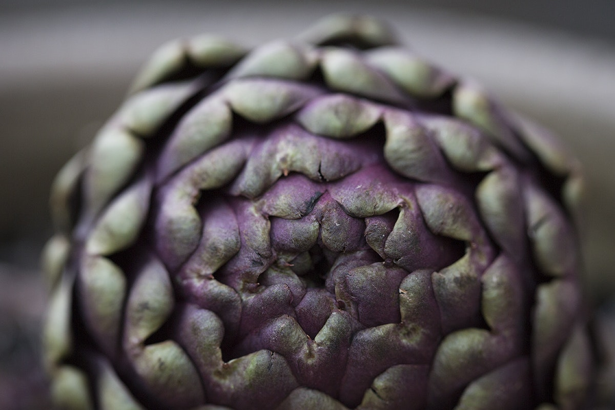 Fruit And Vegetable Market Chefs Guide To Artichokes March 2018 Globe Artichoke Close Up
