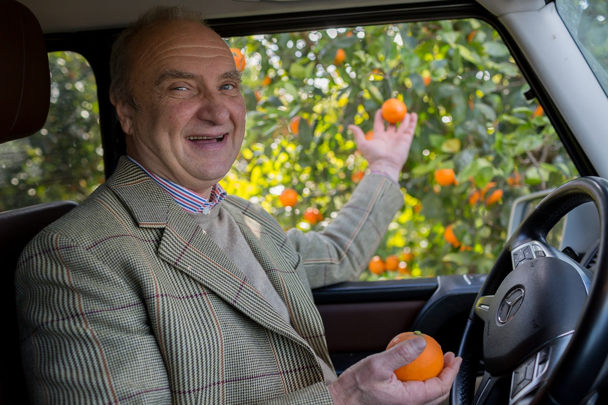 Fruit And Vegetable Market Chefs Guide To Blood Oranges Jan 2019 Rudolf Driving