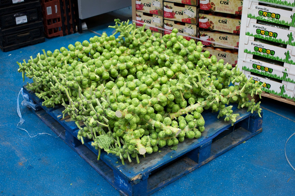 Fruit And Vegetable Market Chefs Guide To Brussel Sprouts December 2017 Palette