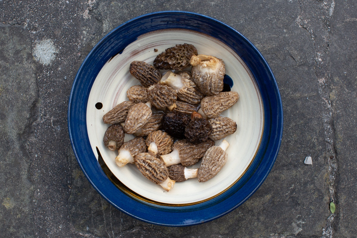 Fruit And Vegetable Market Chefs Guide To Morels Bowl