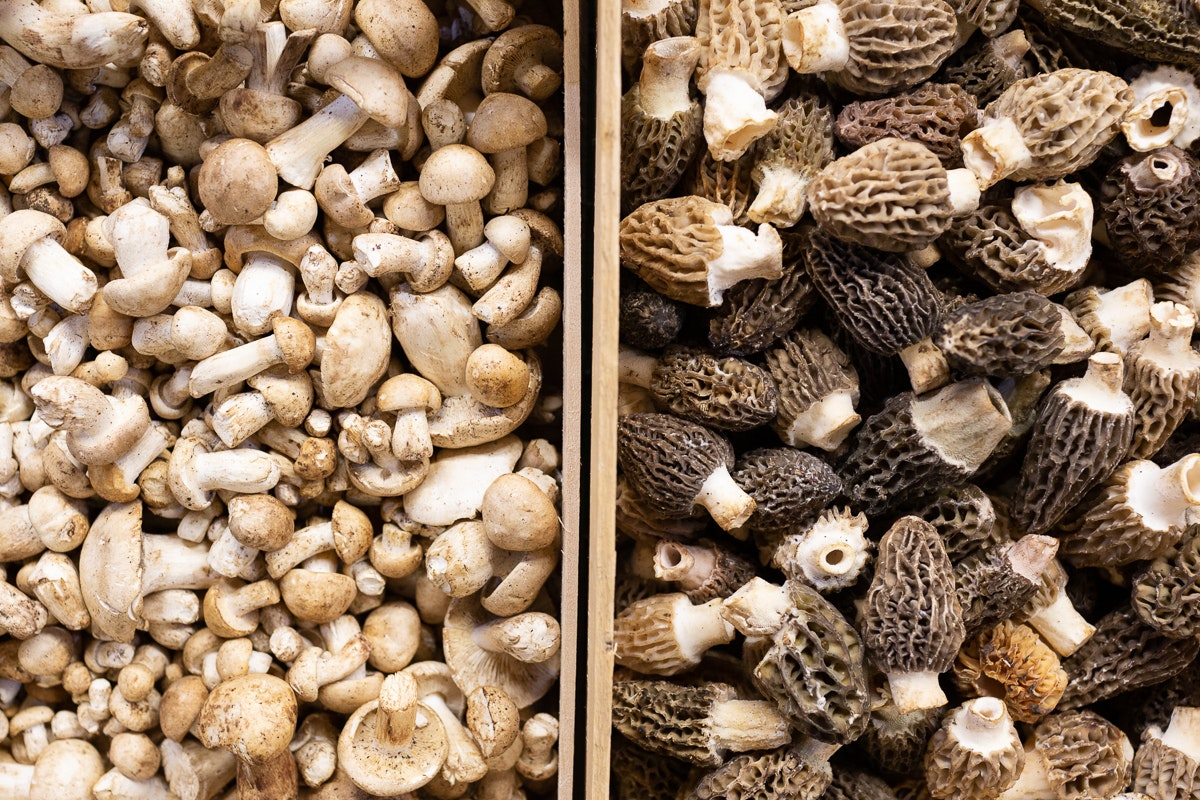Fruit And Vegetable Market Chefs Guide To Morels Mousserons