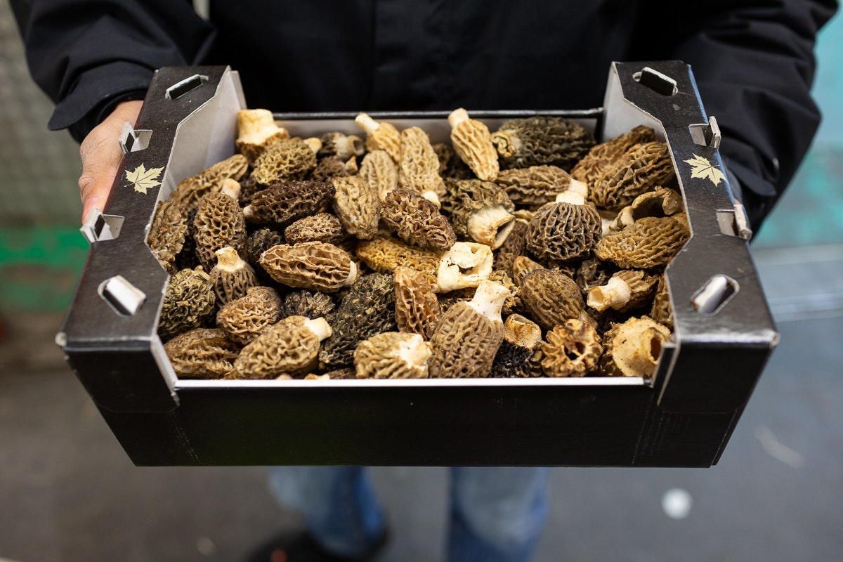 Fruit And Vegetable Market Chefs Guide To Morels Tray