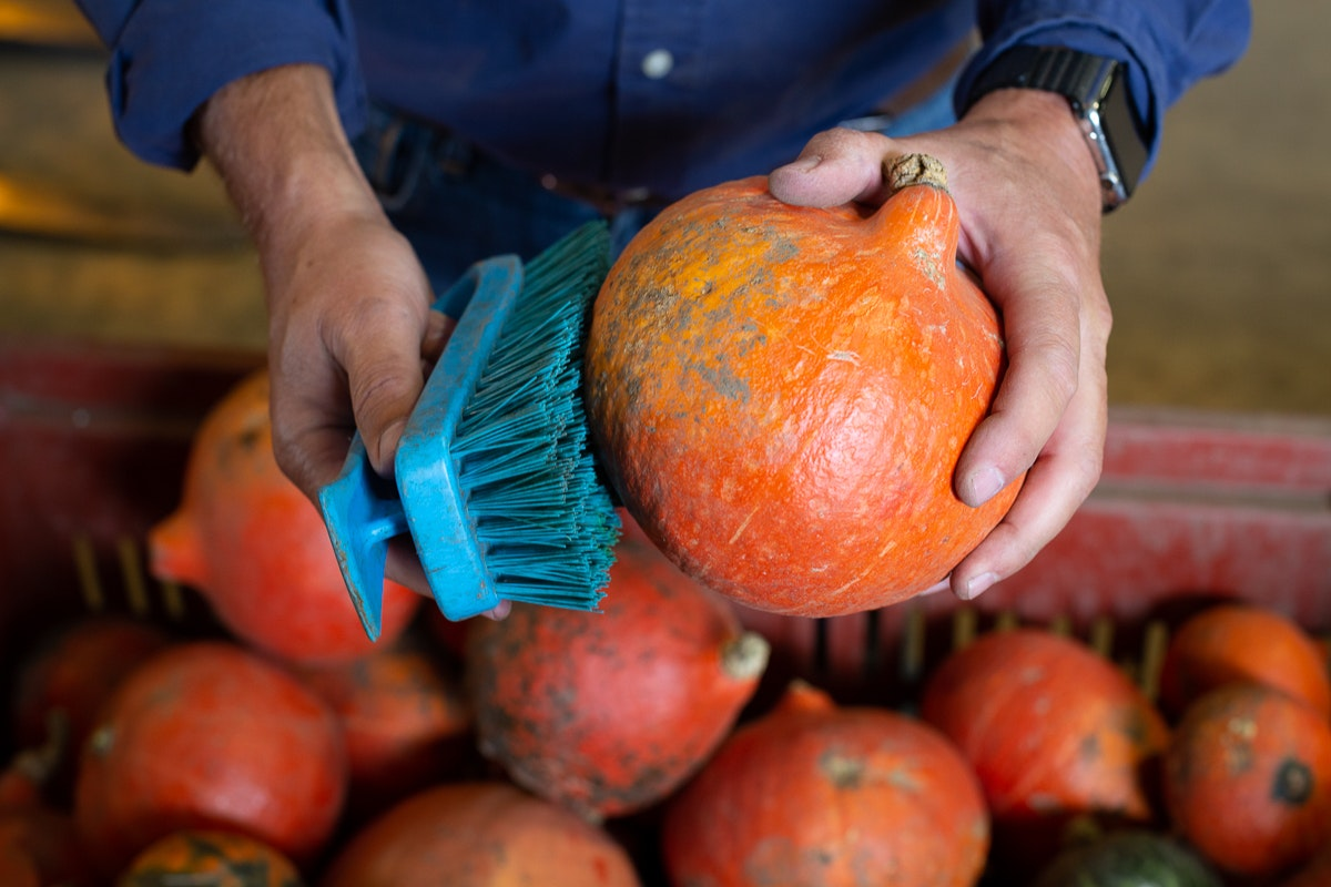 Fruit And Vegetable Market Chefs Guide To Squashes Cleaning