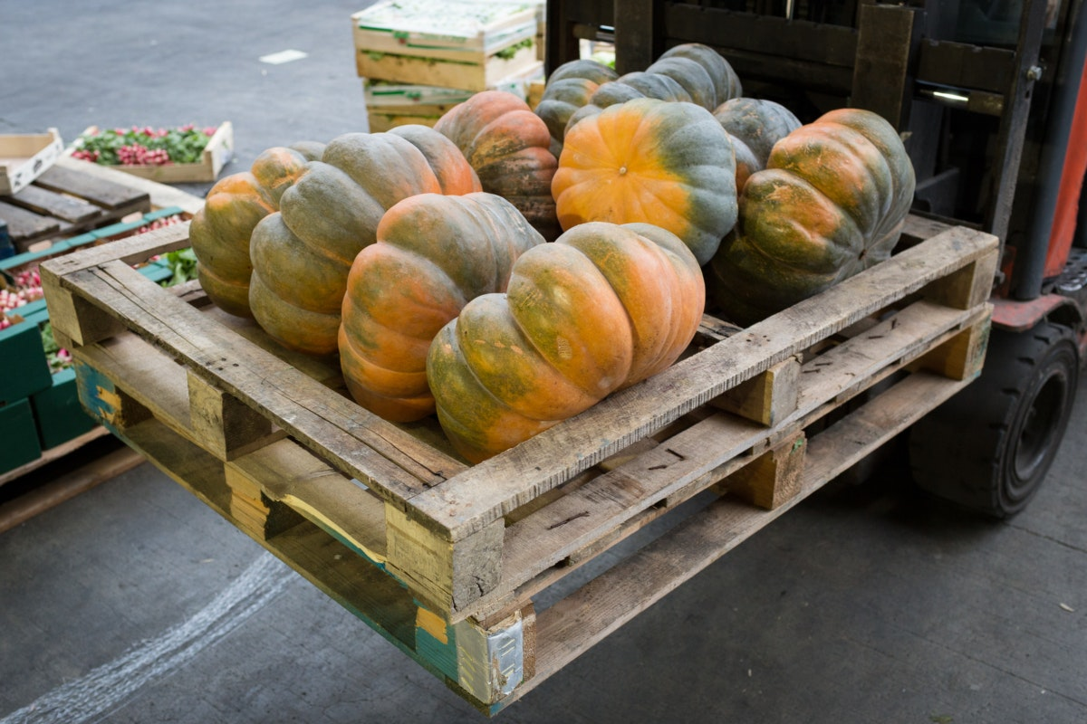 Fruit And Vegetable Market Chefs Guide To Squashes Muscade De Provence