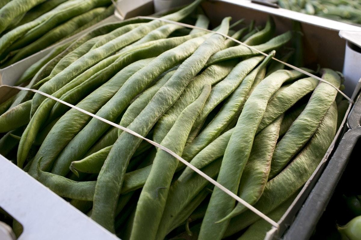 Fruit And Vegetable Market Chefs Guide To Summer Beans Runners