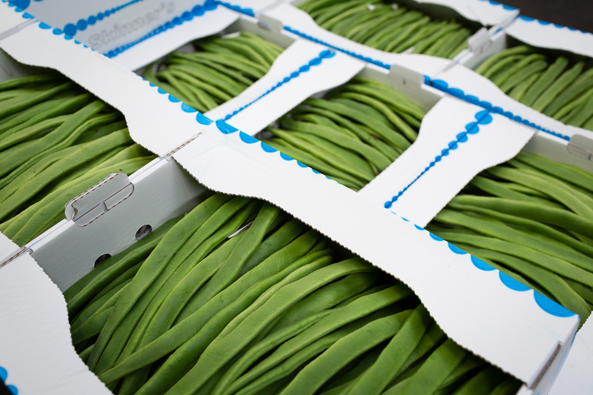 Fruit And Vegetable Market Report August 2018 Runner Beans