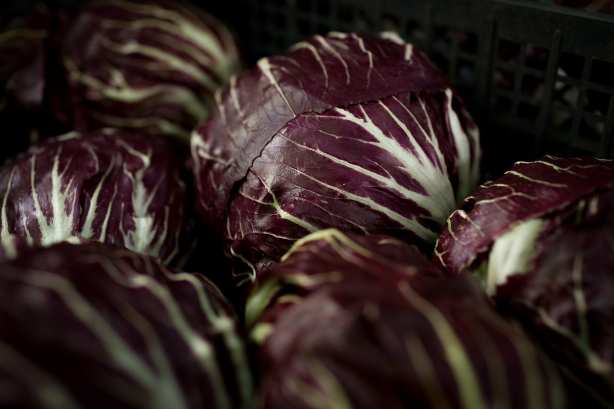 Fruit And Vegetable Market Report December 2017 Radicchio