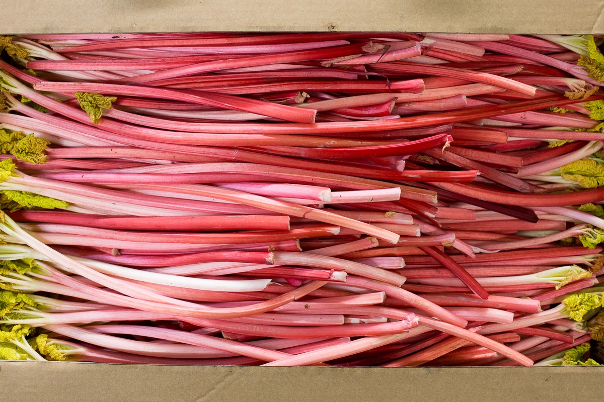 Fruit And Vegetable Market Report February 2018 Forced Rhubarb