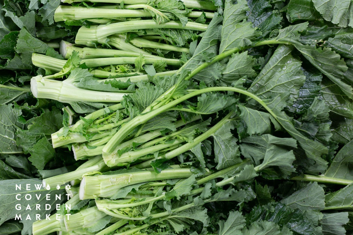 Fruit And Vegetable Market Report February 2020 Cime Di Rapa
