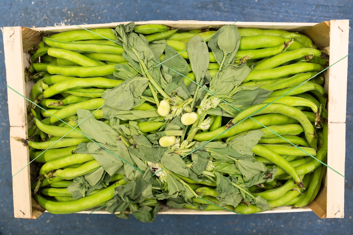 Fruit And Vegetable Market Report January 2018 Broad Beans