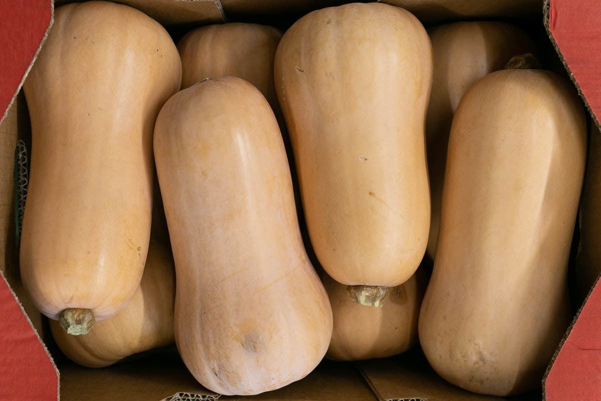 Fruit And Vegetable Market Report January 2020 Butternut Squash