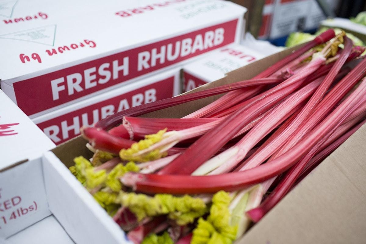 Fruit And Vegetable Market Report January 2020 Forced Rhubarb