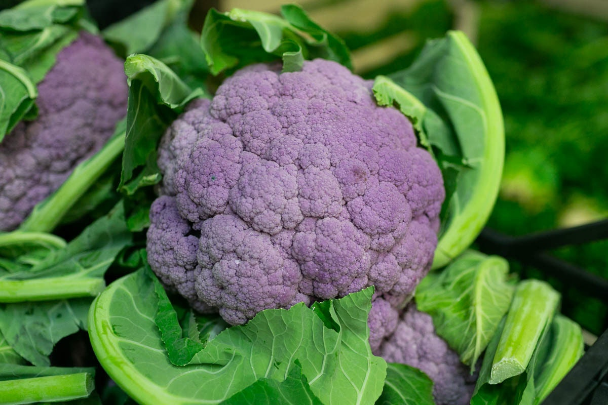 Fruit And Vegetable Market Report January 2020 Purple Cauliflower