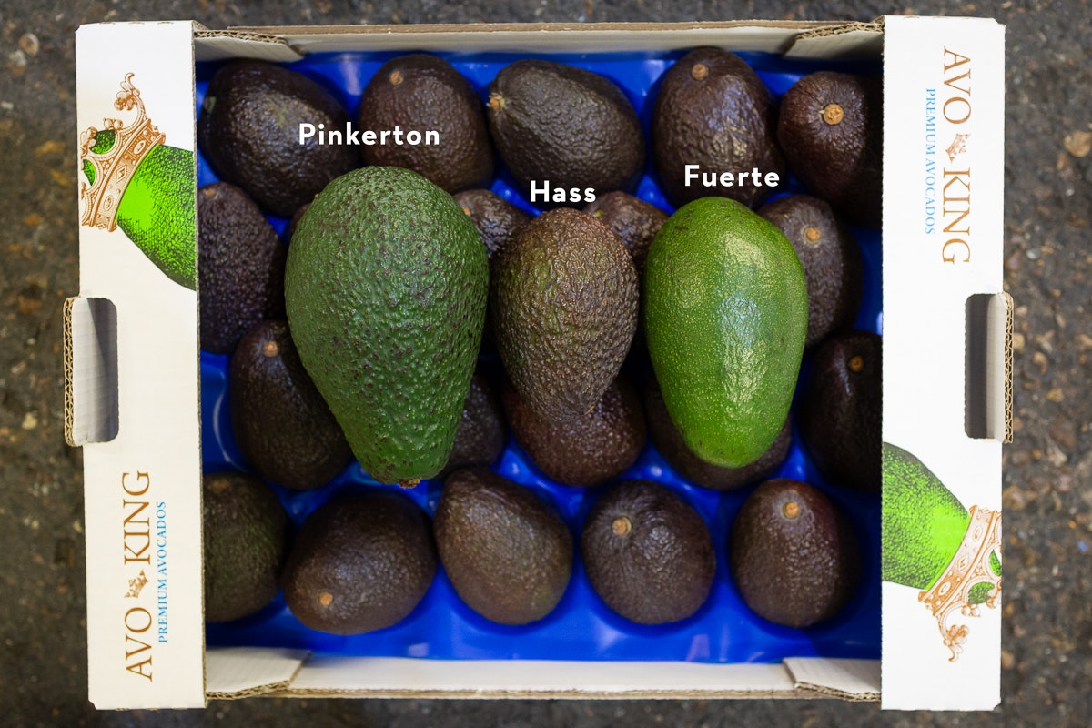 Fruit And Vegetable Market Report July 2018 Avocado Varieties