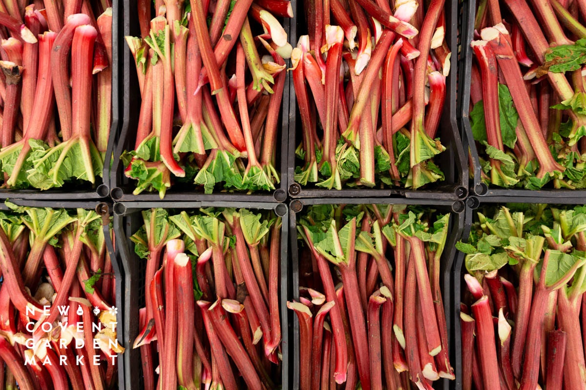 Fruit And Vegetable Market Report March 2020 Outdoor Rhubarb