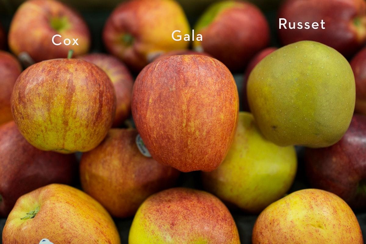 Fruit And Vegetable Market Report November 2017 Apples