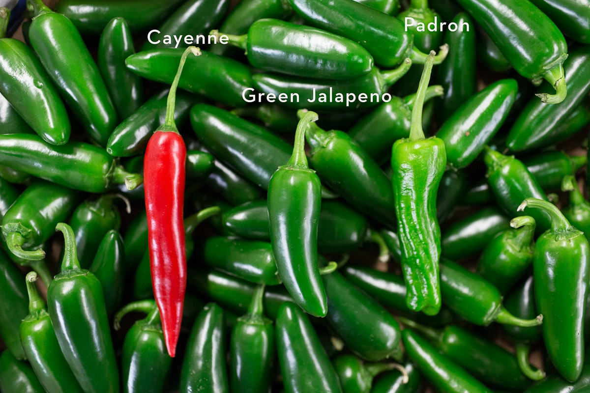 Fruit And Vegetable Market Report November 2017 Chillies