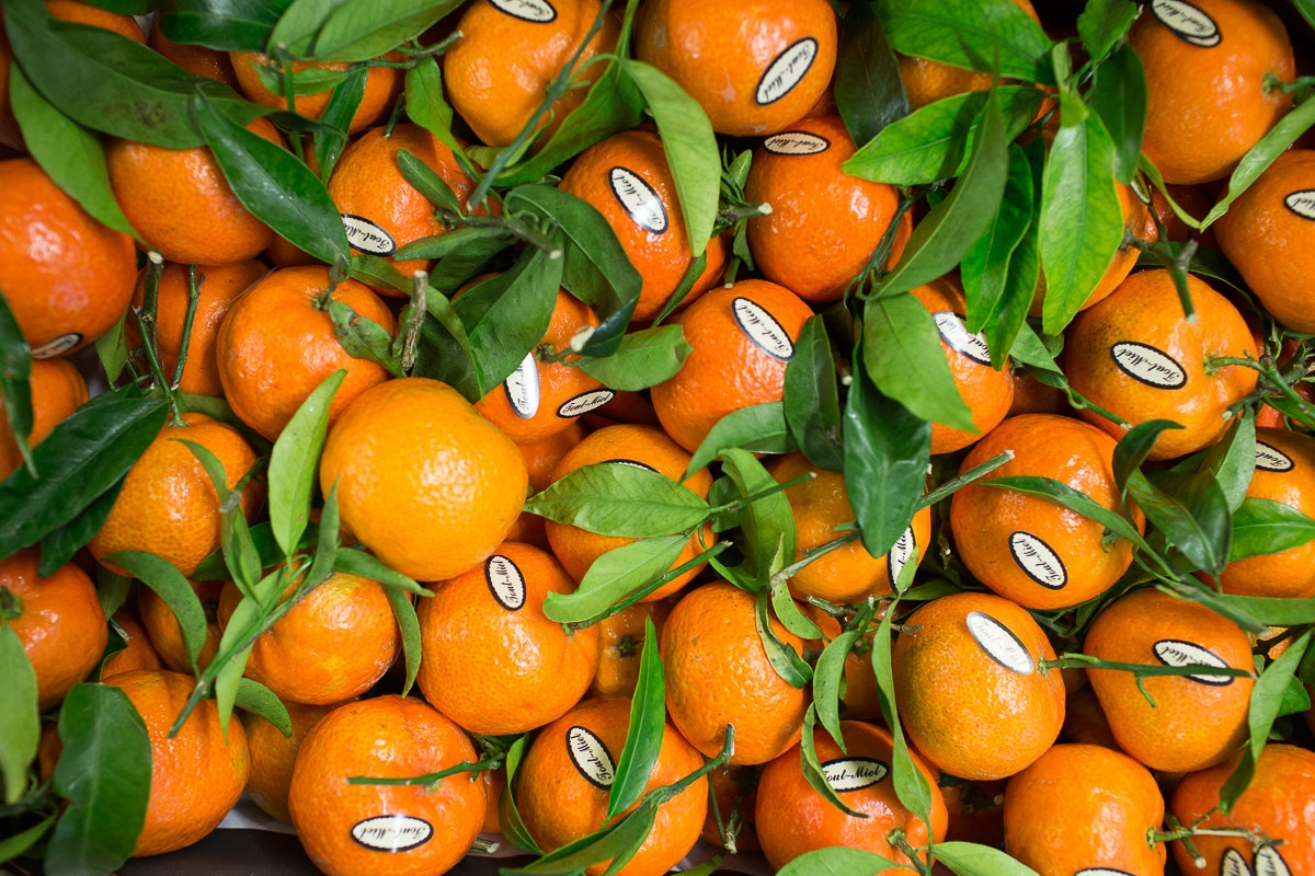 Fruit And Vegetable Market Report November 2017 Clementines