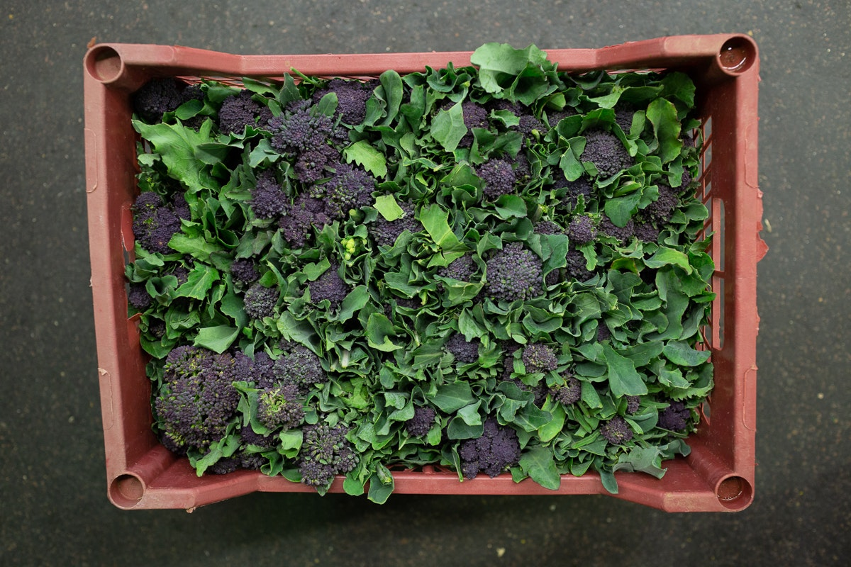Fruit And Vegetable Market Report October 2018 Purple Sprouting