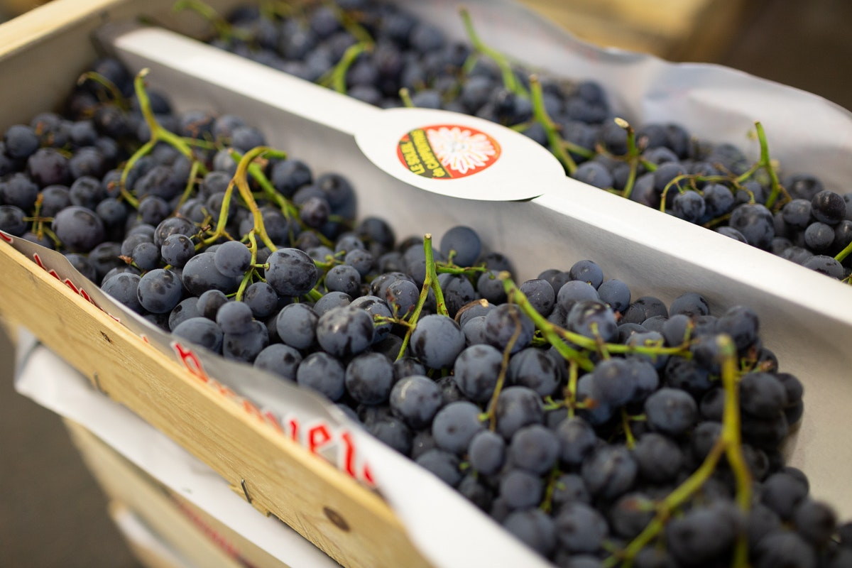 Fruit And Vegetable Market Report September 2018 Muscat Grapes