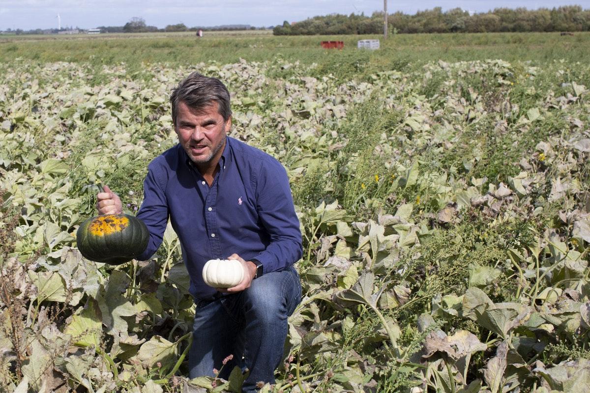 Ncgm British Food Fortnight Squashes Field
