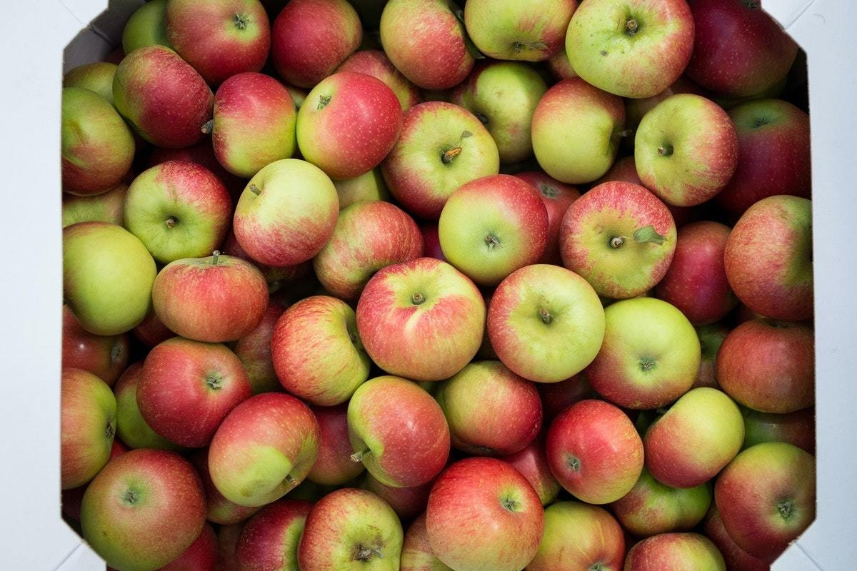 New Covent Garden Market Discovery Apples Wide