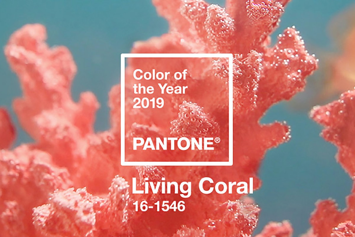 Pantone Color Of The Year 2019 Living Coral Banner 2800