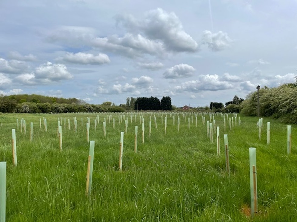 NCGM tenants plant trees to offset carbon emissions