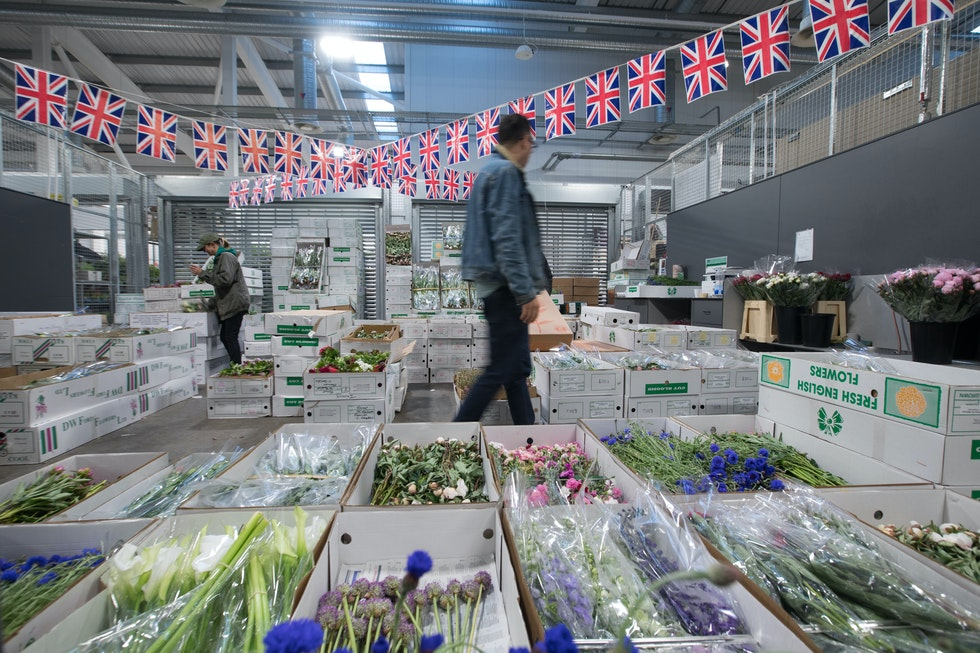 UK sees surge in British flowers sales