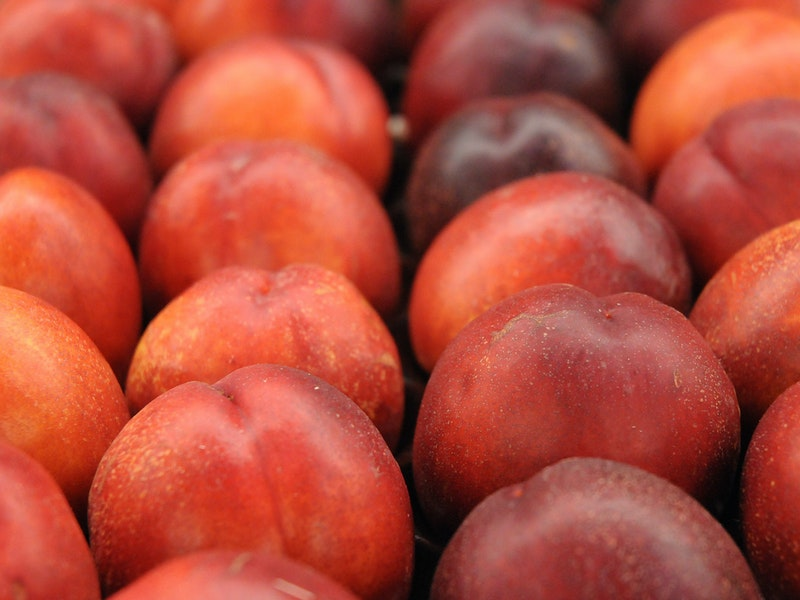 The Telegraph reports on Nature's Choice plan to sell British peaches and nectarines