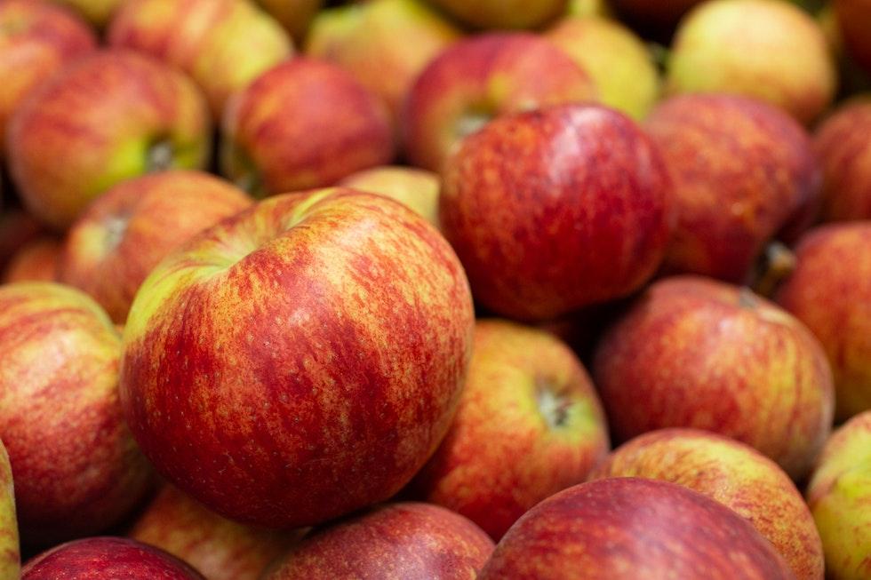 Fruit and veg in season this September